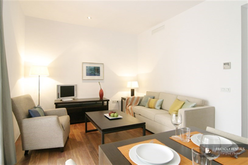 Holiday apartment rental in Seville. Accommodation