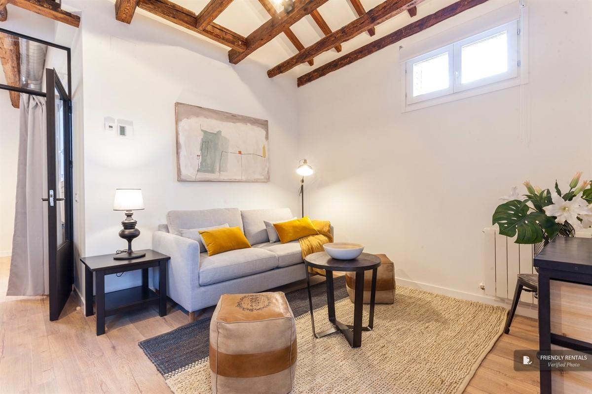 The Barn 69 XIII apartment in Madrid